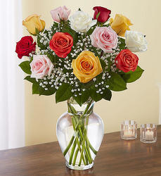 A Dozen Mixed Roses from Clermont Florist & Wine Shop, flower shop in Clermont