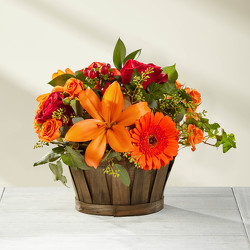 Harvest Memories Basket from Clermont Florist & Wine Shop, flower shop in Clermont