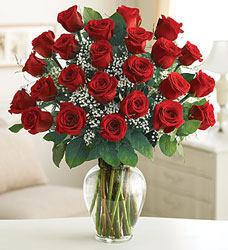 24 Roses - You Choose Color from Clermont Florist & Wine Shop, flower shop in Clermont
