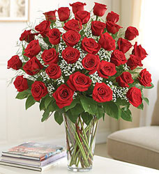 36 Roses - You Choose Color  from Clermont Florist & Wine Shop, flower shop in Clermont