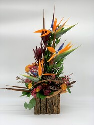 Autumn In Paradise from Clermont Florist & Wine Shop, flower shop in Clermont