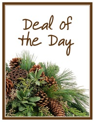 Deal of the Day - Winter from Clermont Florist & Wine Shop, flower shop in Clermont