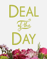 Deal Of The Day By Clermont Florist