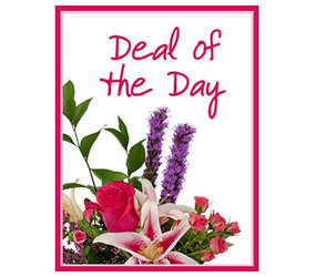 Deal Of The Day Bouquet from Clermont Florist & Wine Shop, flower shop in Clermont