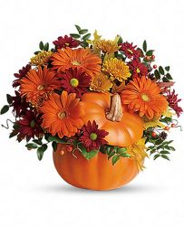 Country Pumpkin Bouquet from Clermont Florist & Wine Shop, flower shop in Clermont