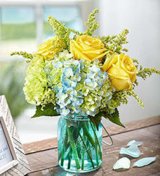 Coastal Blooms from Clermont Florist & Wine Shop, flower shop in Clermont