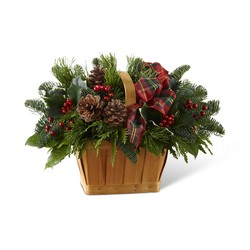 Christmas Coziness Basket from Clermont Florist & Wine Shop, flower shop in Clermont