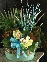 Tin Oval Planter from Clermont Florist & Wine Shop, flower shop in Clermont
