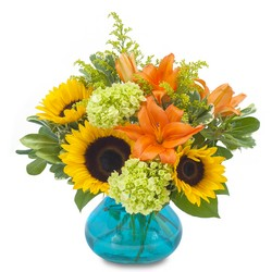 Beautiful Day from Clermont Florist & Wine Shop, flower shop in Clermont