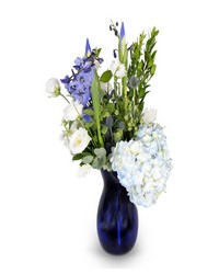 In the Navy from Clermont Florist & Wine Shop, flower shop in Clermont