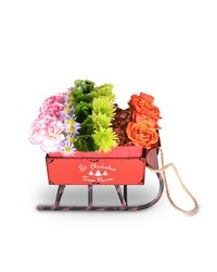 Sleighing It! from Clermont Florist & Wine Shop, flower shop in Clermont