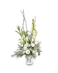 Let it Snow from Clermont Florist & Wine Shop, flower shop in Clermont