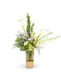 Elegant Greens from Clermont Florist & Wine Shop, flower shop in Clermont