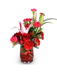 Crimson Blaze from Clermont Florist & Wine Shop, flower shop in Clermont