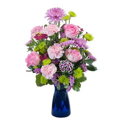 Admiration from Clermont Florist & Wine Shop, flower shop in Clermont