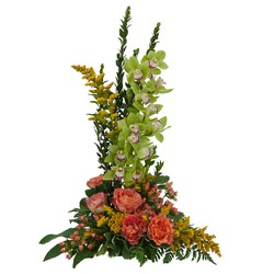 Grand Day from Clermont Florist & Wine Shop, flower shop in Clermont
