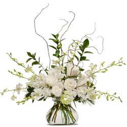 White Elegance from Clermont Florist & Wine Shop, flower shop in Clermont