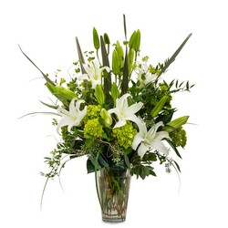 Naturally Elegant from Clermont Florist & Wine Shop, flower shop in Clermont