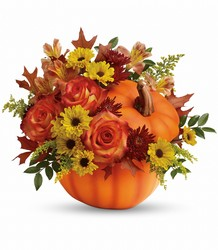 Fall Wishes Bouquet from Clermont Florist & Wine Shop, flower shop in Clermont