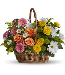 Sweet Tranquility Basket from Clermont Florist & Wine Shop, flower shop in Clermont