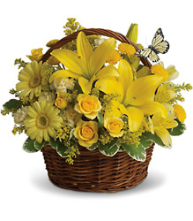 Basket Full of Wishes from Clermont Florist & Wine Shop, flower shop in Clermont