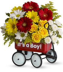 Baby's Wow Wagon by Teleflora from Clermont Florist & Wine Shop, flower shop in Clermont