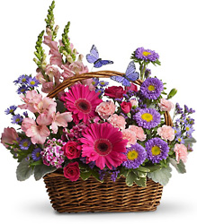 Country Basket Blooms from Clermont Florist & Wine Shop, flower shop in Clermont