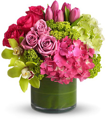 New Sensations from Clermont Florist & Wine Shop, flower shop in Clermont
