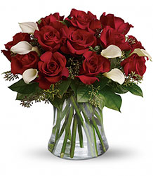 Be Still My Heart - Dozen Red Roses from Clermont Florist & Wine Shop, flower shop in Clermont