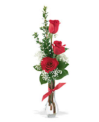 3 Red Roses from Clermont Florist & Wine Shop, flower shop in Clermont