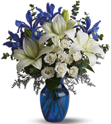 Blue Horizons from Clermont Florist & Wine Shop, flower shop in Clermont